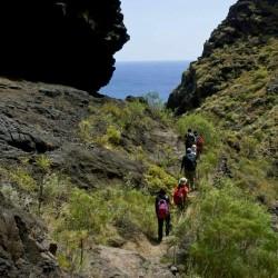 Tenerife en modo Trekking - Barranco de Masca - Tribbuu