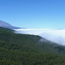 Trekking - Tenerife en modo Trekking - Mar de nubes - Tribbuu
